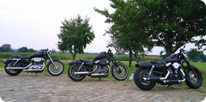 883 Low, 1200 Nightster, 1200 Forty Eight (v.l.n.r.)